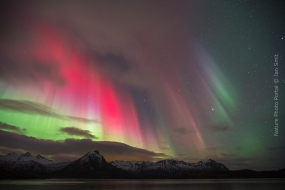 Northern lights above the city of Laukvik on the Lofoten Islands