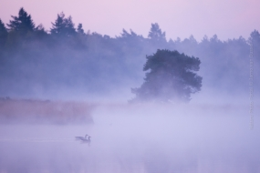 Landscape photography on Nature Photo Portal by Jarno van Bussel