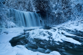 Nature_Photo_Portal_Kyle_McDougall_AWinterPlunge