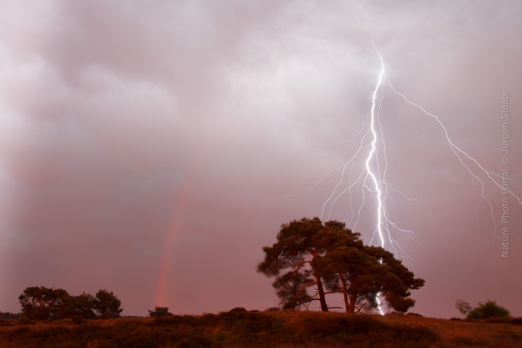 Landscape_Photography-Nature_Photo_Portal-Jurgen_Sloots-Thunderstorm-rainbow-trees-heather