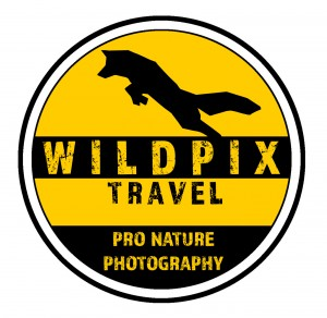 WILDPIX TRAVEL