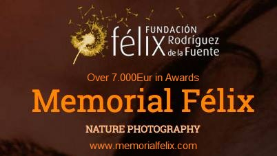 Photo Contest Felix De La Fuente