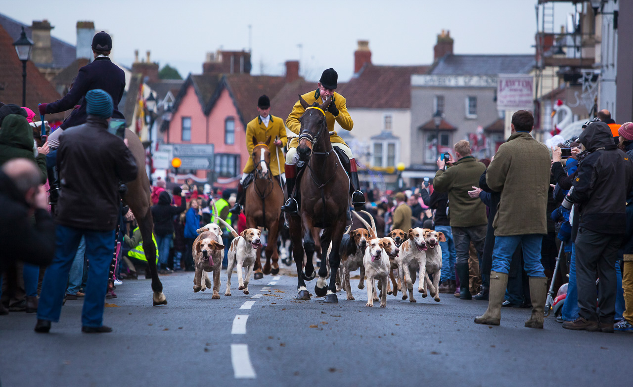 Nature_Photographer_of_the_Year_contest_2018-sponsor-Buteo_Photo_Gear-C11_4_NPOTY-2018_Neill-Aldridge_Horses-Hounds-And-Huntsmen